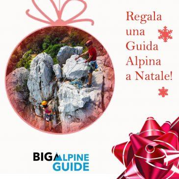 Regala una Guida Alpina a Natale
