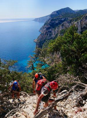 trekking-bigalpineguide